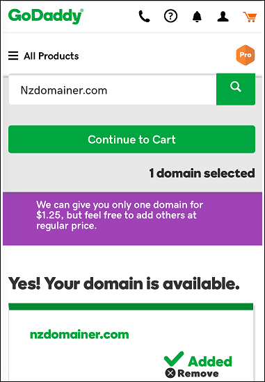 godaddy-domains-nz-3